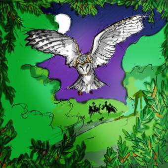 click to  expand - Mervyn's barn owl had seen the goblins